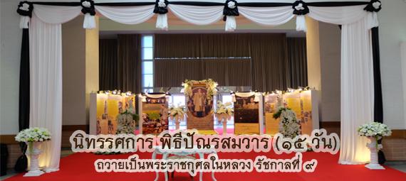 25591027-banner