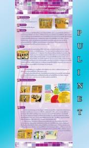 p3_pulinet2556