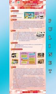 p4_pulinet2556