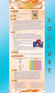p6_pulinet2556